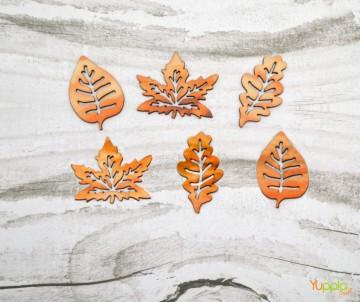 Camaleontici - foglie...