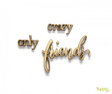 Crazy Friends Only