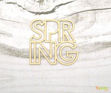 Spring outline